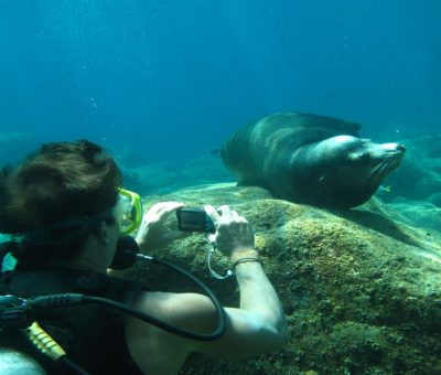 cabo, adventure, scuba diving, wedding activities
